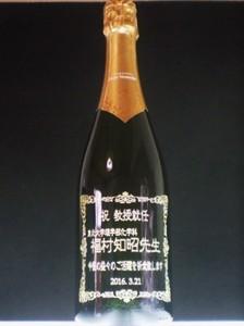 P1290013.JPG